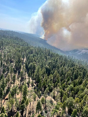 Wisconsin Army National Guard UH-60 Black Hawk crews from the Madison, Wis.-based 1st Battalion, 147th Aviation provide assistance in wildfire fighting operations in California.